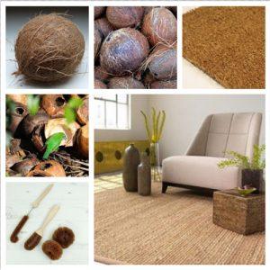 fibra de coco aplicada al textil