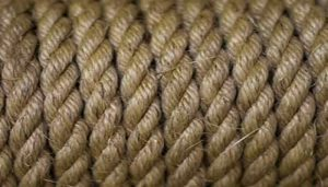 usos de la fibra de sisal